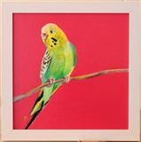 Sarah Graham's ... Budgie Rose ii by C R U S H, Painting