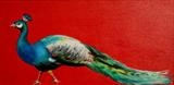 Sarah Graham's ... Peacock Red by C R U S H, Painting
